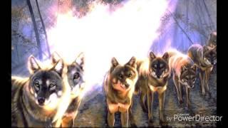 Клип про животных. Полина Гагарина-Кукушка