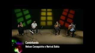 Caminhando - Nelson Cavaquinho