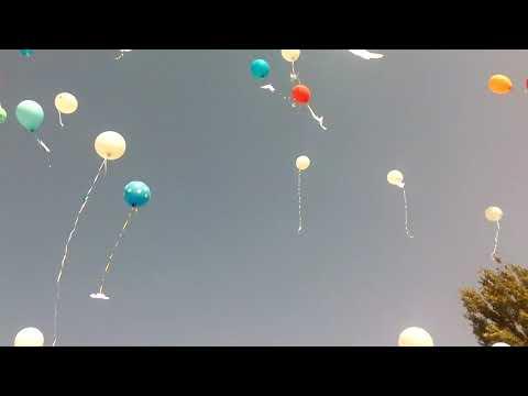 Запустили шарики в небо!