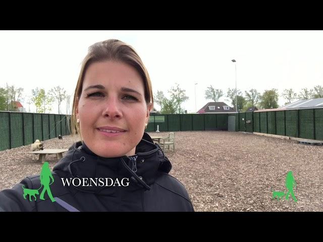 Anniek Winters hondengedragsdeskundige | WEEKVLOG 3