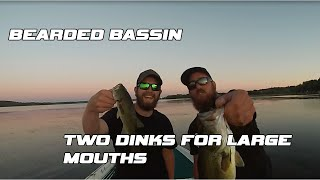 Bearded Bassin   First Video! (2 Dinks for Largemouth) -- Lake Scugog