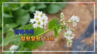 [김여사의 책꽂이]  김여사의 말랑말랑  Talk
