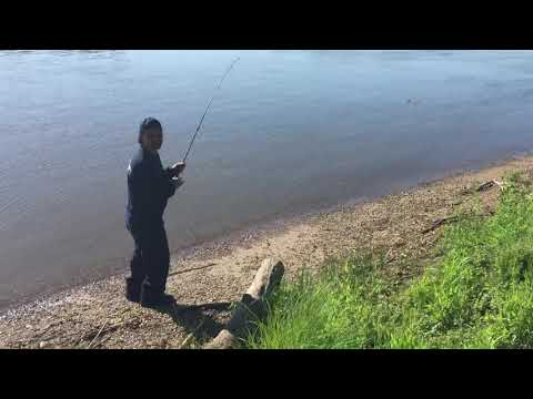 Carp Fishing Dixon Illinois