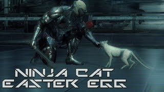 Metal Gear Rising: Revengeance - Ninja Cat Easter Eggs