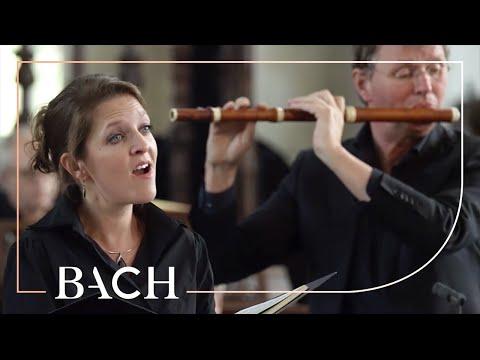 Bach - Aus Liebe From St Matthew Passion BWV 244 | Netherlands Bach Society