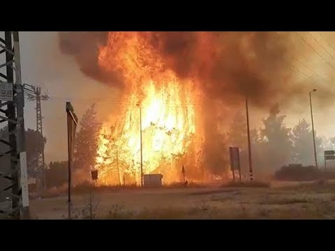 Netanyahu asks for international help as huge fires force evacuation of 3,500