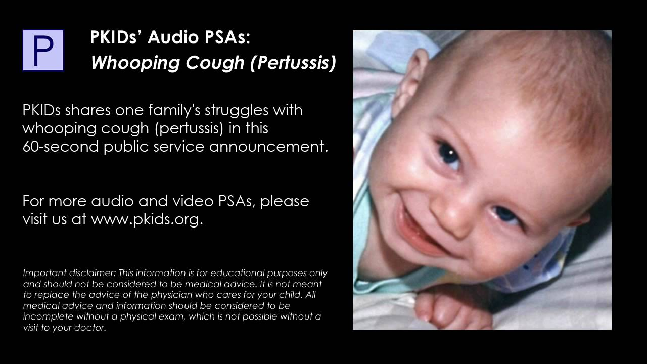 pertussis whooping cough essay Today i chose my topic for written assessment for study skills it will be on the infection whooping cough, that is caused by the bacterium bordtella pertussis.