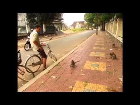 Entrada a Camboya