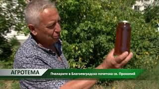Каква пчеларска година е 2019?   автор Снежана Любенова