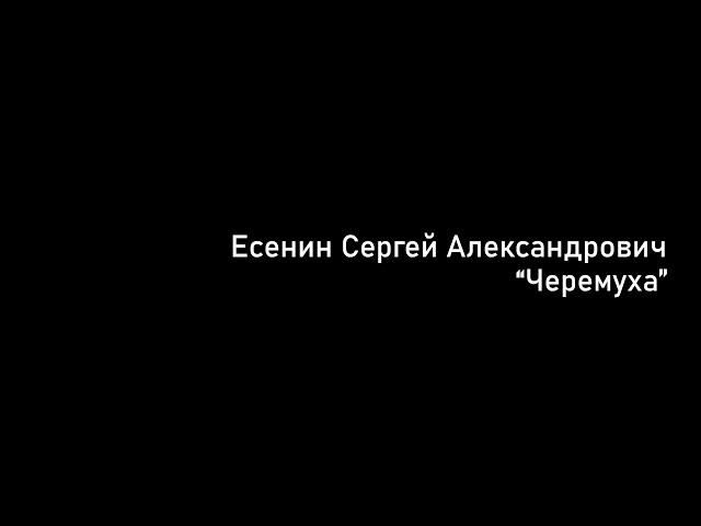Изображение предпросмотра прочтения – ВарвараБачурина читает произведение «Черёмуха» С.А.Есенина