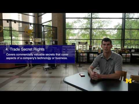 Overview of Intellectual Property Categories | IP series 2 of 62