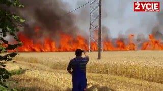 Pożar zboża w Kuklinowie - 1 sierpnia 2015
