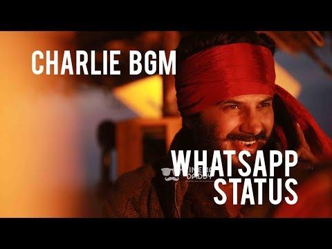 Charlie Malayalam Movie BGM - The Rescue Theme | Charlie | DQ | Trinetra Media