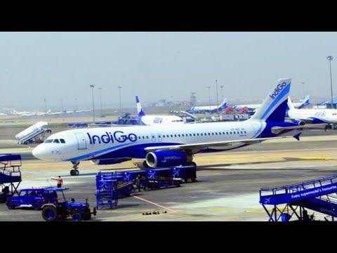 November Indigo Staff Manhandle Passenger Airline Indigo Issues Apology New Delhi Airport