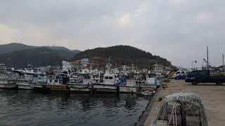Yeongdeok chuksan port | gyeon…