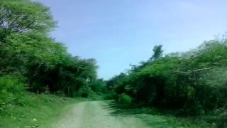 Caminos de Tetecala. Juan Carlos Reyes