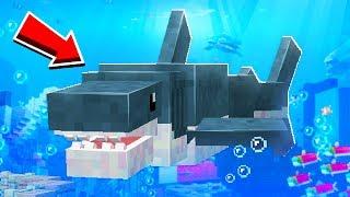 80 NEW Animals Minecraft Will NEVER Add!