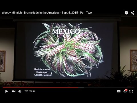 Woody Minnich - Bromeliads in the Americas - Sept 5, 2015  - Part Two
