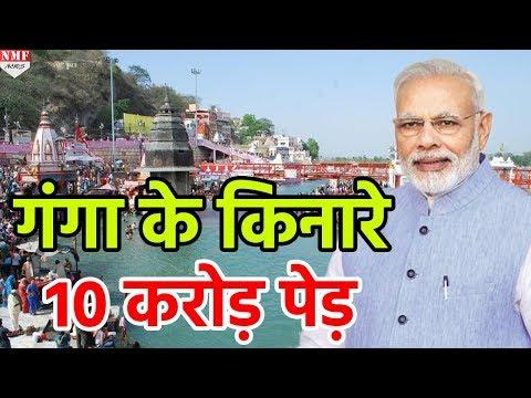Ganga River के किनारे 10 Crore Tree लगाएगी Modi Government