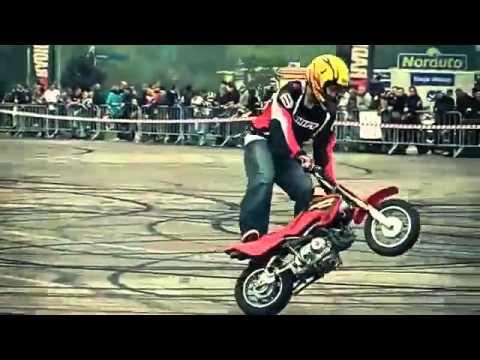 freestyle motor