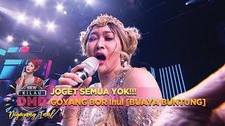 JOGET SEMUA YOK!!! GOYANG BOR Inul [BUAYA BUNTUNG] - DMD Digoyang Inul (22/11)