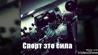 КЛИП Sport
