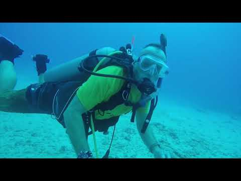 Scuba Diving - Kakaako Waterfront Park - Point Panic