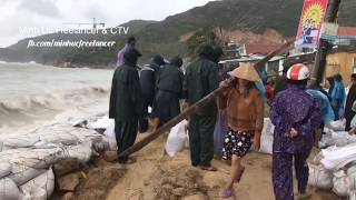 [Bão số 6] Sóng to gió lớn ở xã đảo Nhơn Hải (Tp Quy Nhơn - Bình Định)