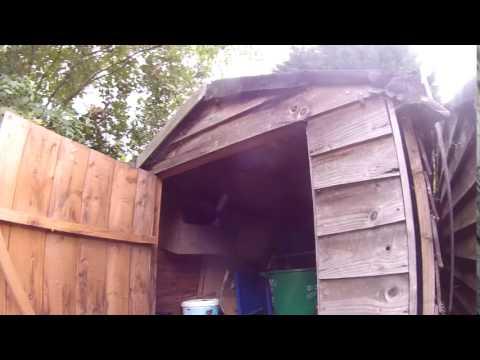 Wasp Nest vs Aug