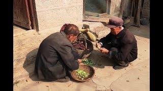 70多歲的單身老人做飯技術一點都不差,看看他吃的啥? 【盧保貴視覺影像】