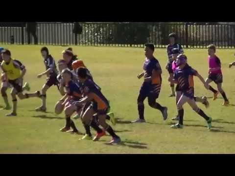 Toongabbie Tigers v Rouse Hill Rhino's  U'10 2 Round 12
