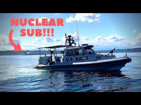 STOPPED By U.S. Navy While Fishing! TOO CLOSE To A NUCLEAR SUB! (Catch & Cook)