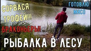 Рыбалка в лесу Крупный сошел Нарвался на сети