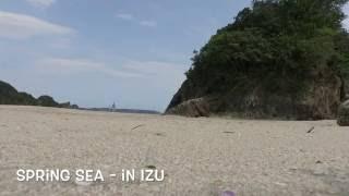 Spring Sea in IZU