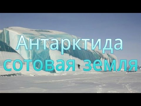 Антарктида 🐧сотовая земля 🌐соседняя ячейка.