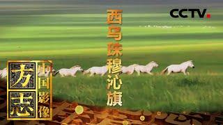 《中国影像方志》 第583集 内蒙古西乌珠穆沁旗篇  CCTV科教