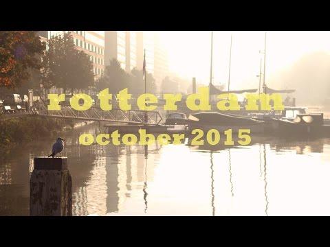 Foggy Morning in Rotterdam | Travel Film | Study Abroad