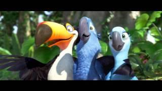 RIO - tous les oiseaux du brésil