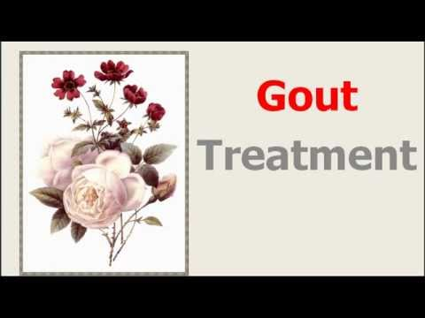 Gout Treatment: Stop Your Gout With A Gout Diet And Natural Cures For Gout