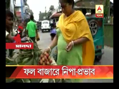Nipah-scare impacts in malda fruit market