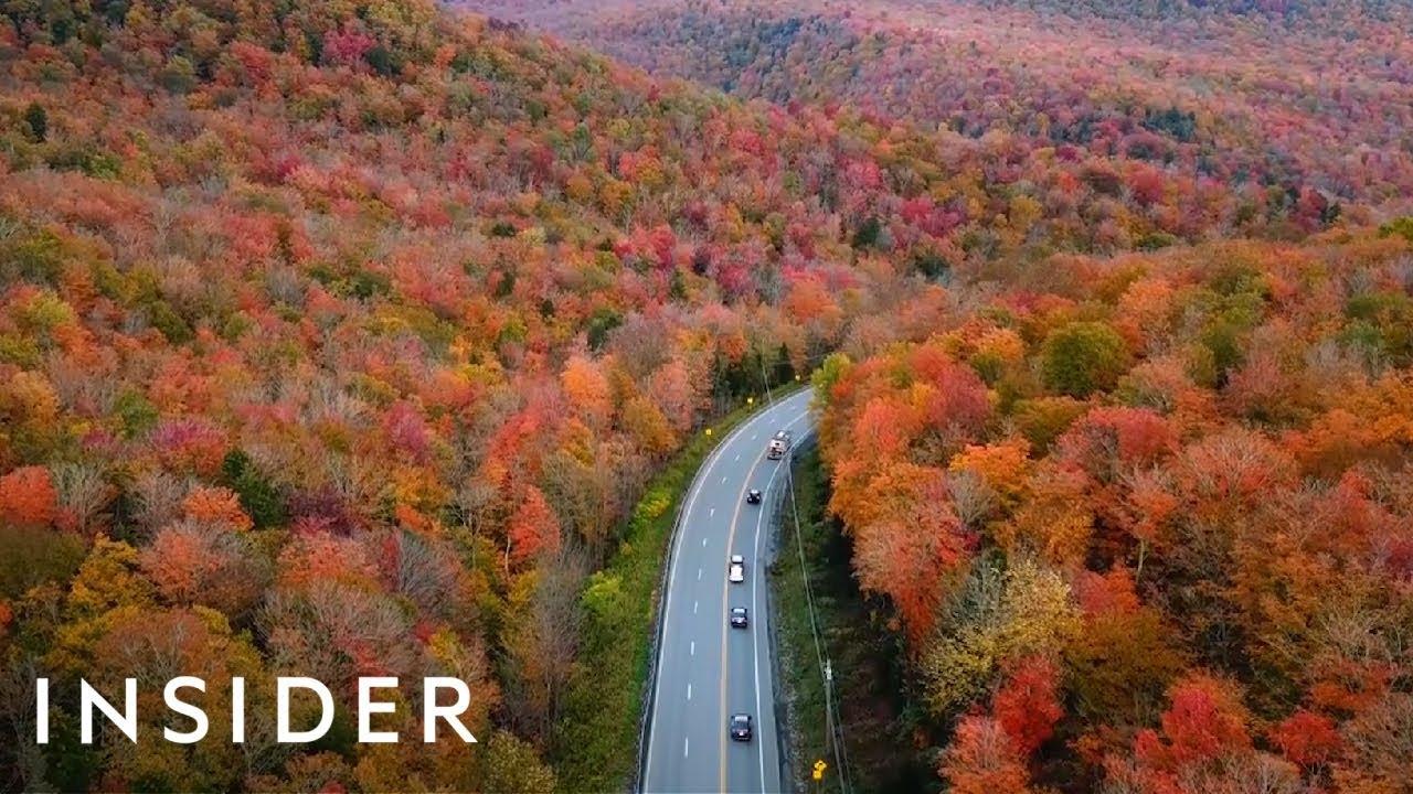 Како изгледа есента во различни земји низ светот?