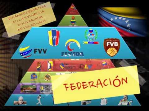 Estructura Organizativa del Deporte en Venezuela