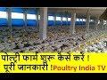 🐓पोल्ट्री फार्म शुरू कैसें करें ! पूरी जानकारी ! || How To Start A Poultry farm In India