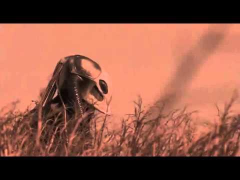 Evil Aliens - Combine Harvester (not potato quality)