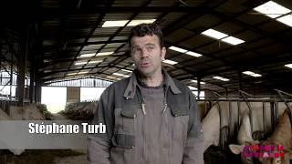 SARL Turbeaux à Vallières les Grandes (41) - L'élevage de bovins allaitant, une vocation