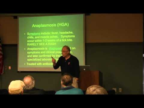 Phillip Pellitteri discusses tick bilogy, deer ticks and Lyme disease