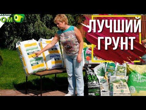 Какой грунт выбрать ✔️ Правильный грунт �� Garden zoo интернет-магазин��
