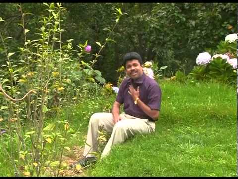 En Aathumavae Thendralae DVD by rev Melvin manesh
