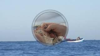 Морская рыбалка в Тунисе в октябре