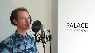 Sam Smith - Palace (Cover by Tim Sandys)